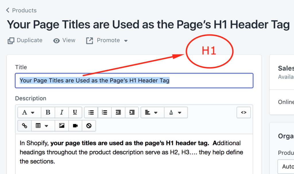 Fix Shopify headings using the rich text editor page headings become h1